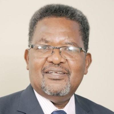 Mr Andrew Ndishishi